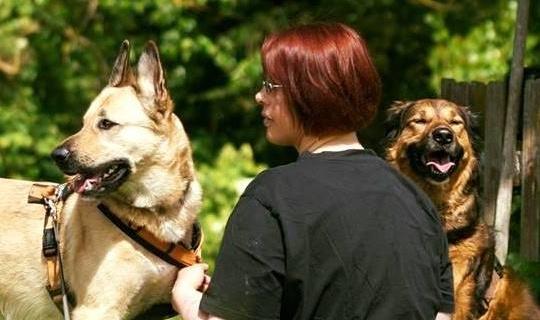 HundgeRecht